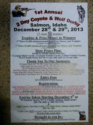 Salmon Idaho wolf coyote derby