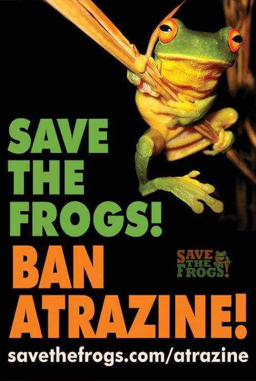 Action Alert Save Americans With >> Help Get Atrazine Banned An All Creatures Org Action Alert