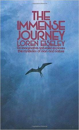 the bird and the machine loren eiseley essay View notes - science and technology chapter 10pdf from english en4010 at marina high school the bird and the machine (centeral essay) -loren.