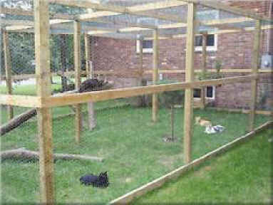 You could also build a cat enclosure something like this. Just make ...