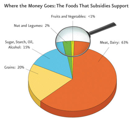 Usda Replaces Food Pyramid With Myplatewhat About Subsidies An