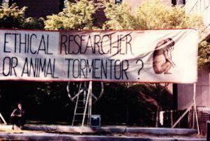 animal torture