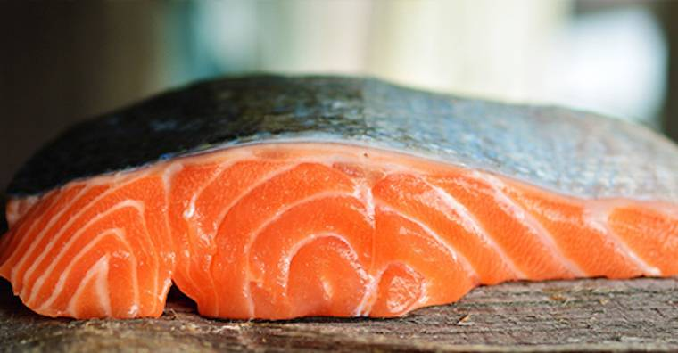 Is fish part of a healthy diet for All fish diet