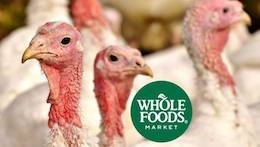 whole foods turkeys