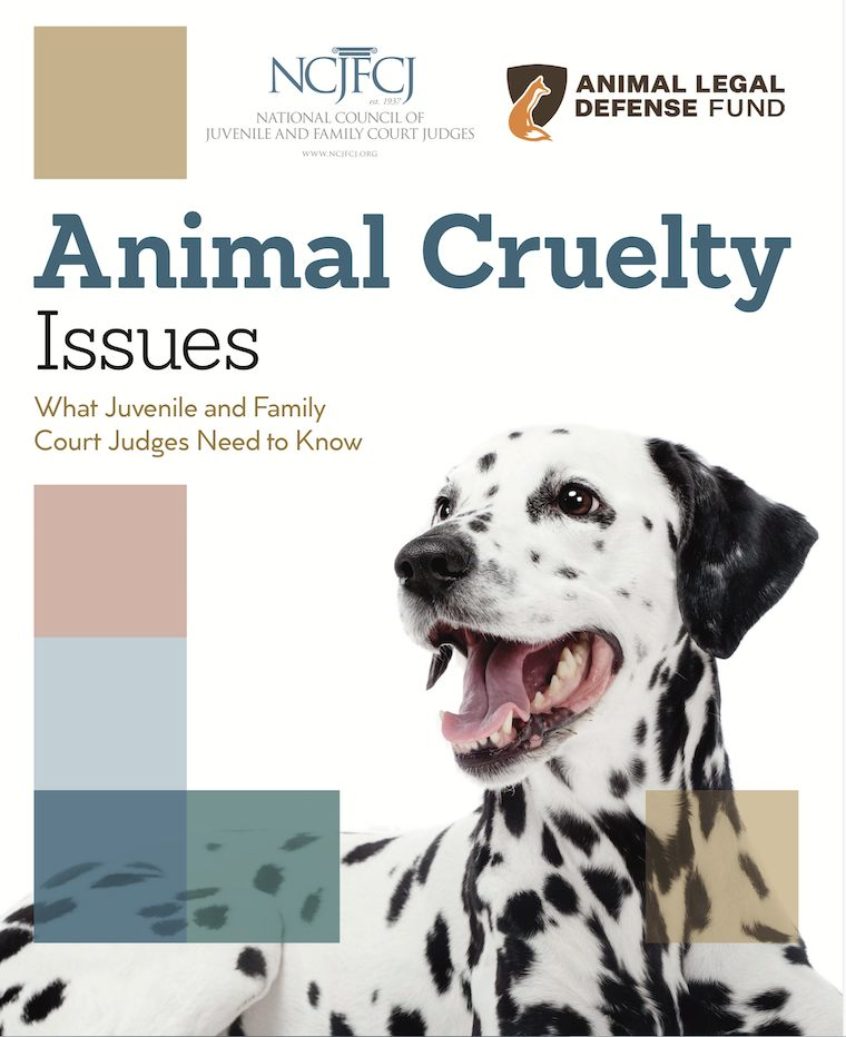 animal cruelty courts