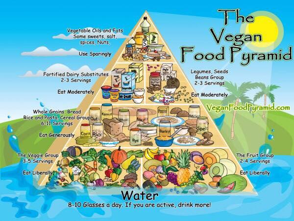 Vegans Eat Food Pyramid