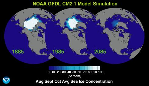 Arctic And Antarctic Under Global Warming Saving