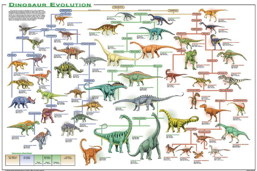 скачать игру Evolution Of Species - фото 11