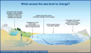 the factors contributing to the rising global warming Difference between global warming & the greenhouse effect  global warming refers to the rise in average global surface and ocean temperatures  contributing to.