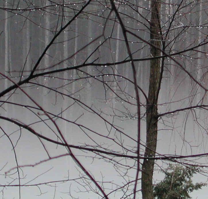Slike za danas - Page 3 Wi-fog-01