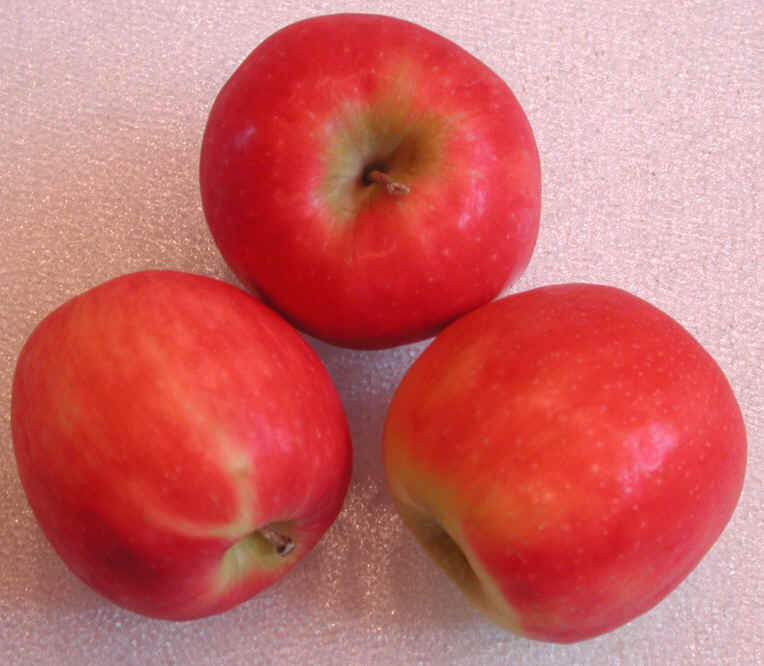 apples pink lady or cripps pink lady apples have been marketed as a ...