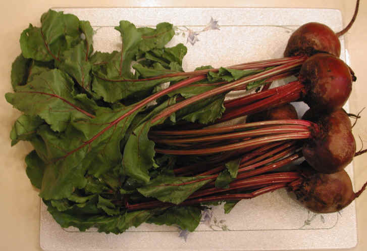 Beets and Beet Greens - Ingredients Descriptions and Photos - An All ...