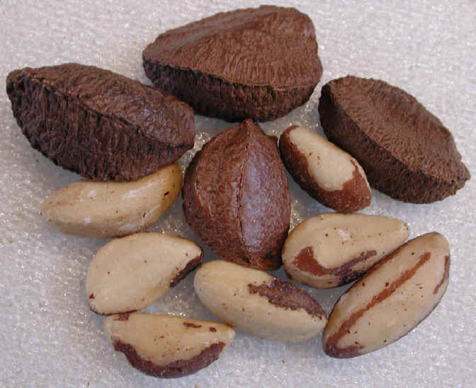 Brazil nuts are rich in selenium - excellent for your defense system.