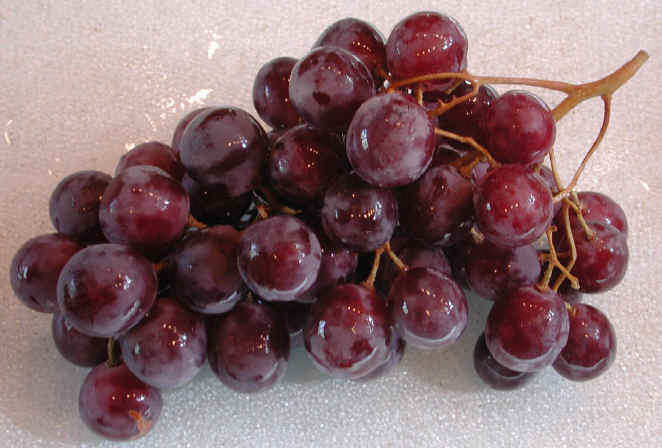 http://www.all-creatures.org/recipes/images/i-grapes-globe.jpg