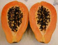 Papaya, Half