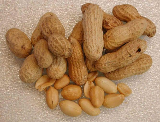 i-peanuts.jpg