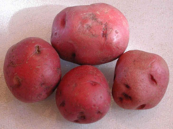 Potato Skins Potatoes Red Flesh And Skin
