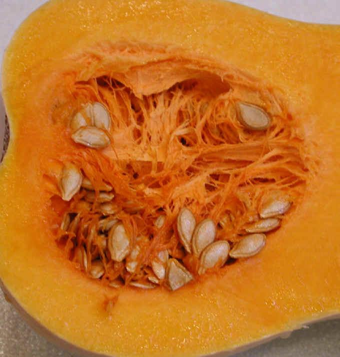 فوائد عن القرع I-squash-butternut-3