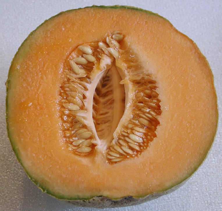 how to ripen cut cantaloupe