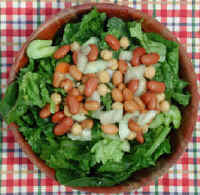 Tossed Salad with Beans